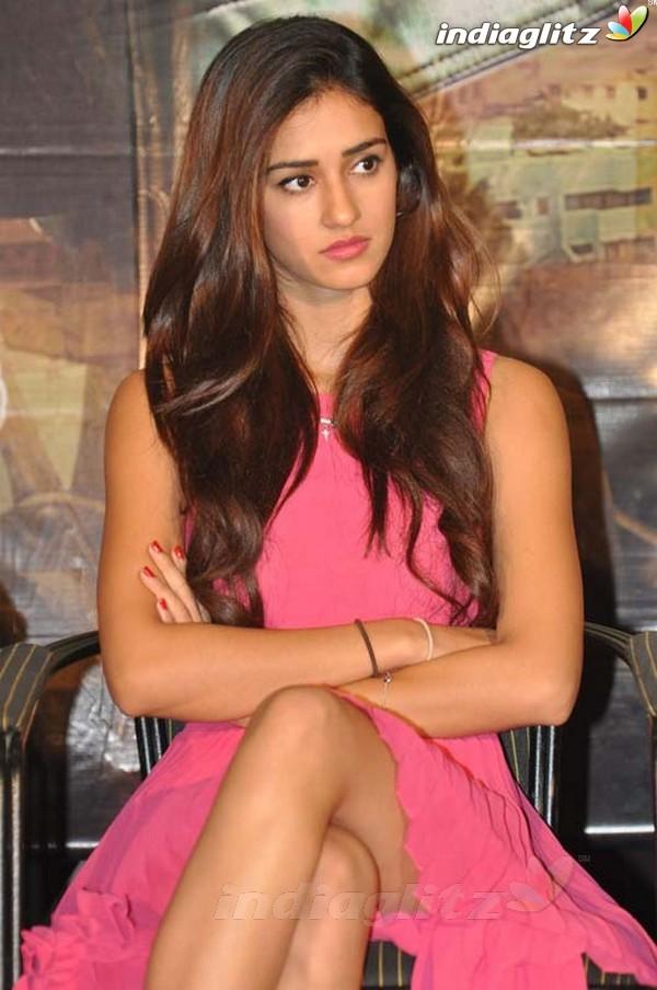 Disha Patani Gallery Bollywood Actress Gallery Stills