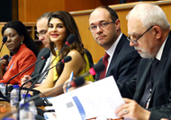 'Jacqueline Builds' enters European Parliament