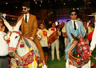 IIFA 2016: Shahid Kapoor & Farhan Akhtar win hearts with Donkeys