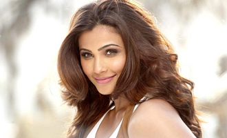 Daisy Shah: I don't give up so easily