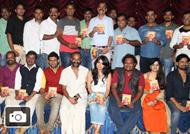 Thundh Haikla Sahavasa- Audio Release