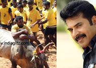 Protest against Jallikkattu ban is a role model for India opined Megastar Mammootty