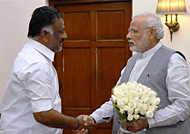 A Small victory for Jallikattu protest - OPS to meet Modi details