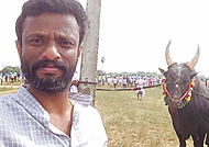 Pandiraj's daring attempt in support of Jallikattu