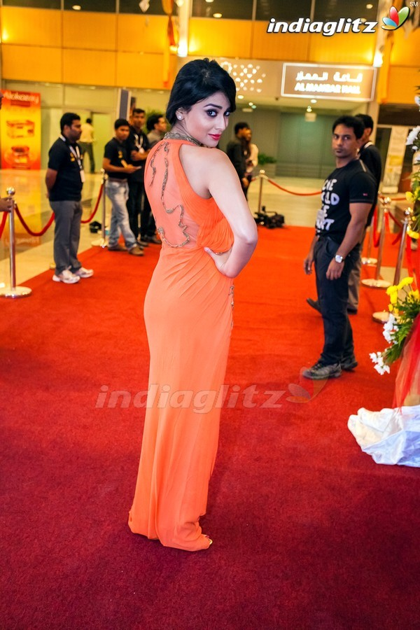 Celebs @ SIIMA Awards 2013 (Set 1)