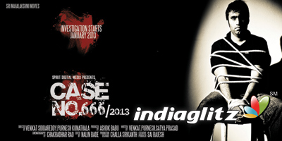 Case No 666/2013