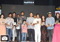 'Gentleman' Audio Launch