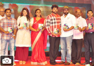 'Maa Abbayi' Audio Launch
