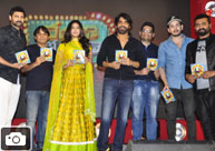 'Naruda Donoruda' Audio Launch