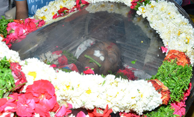 Celebs Pay Last Respects To Gundu Hanumantha Rao