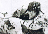 I was mad: Big B on daredevil stunt with tiger