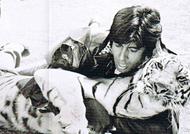 I was mad: Big B on daredevil stunt with tiger