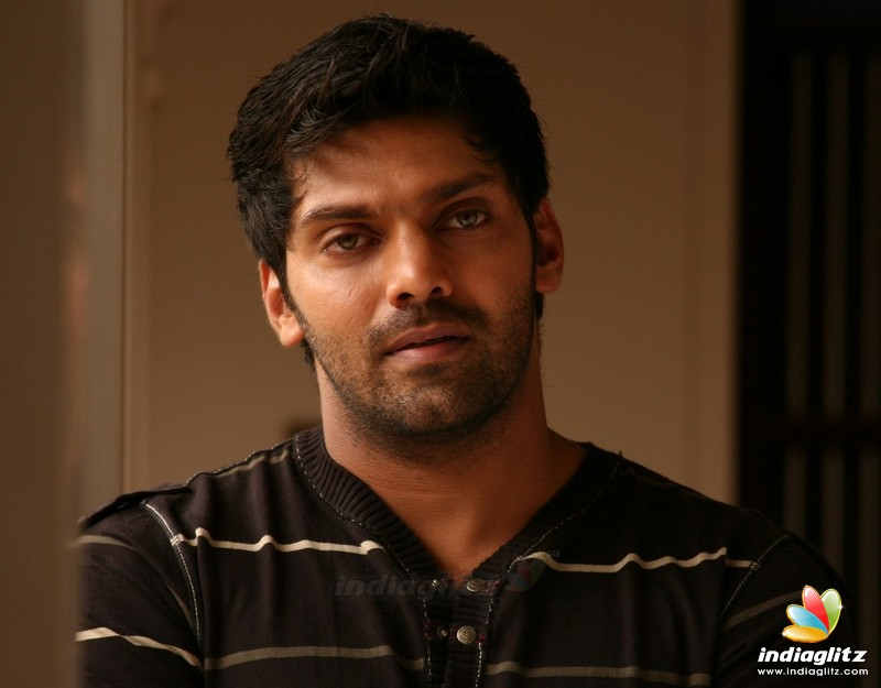 Arya: Tamil Actor Photos, Images, Gallery, Stills