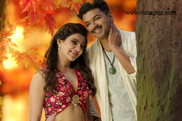 What are Vijay's roles in Vijay 61?