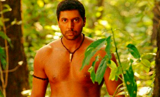 Jayam Ravi Sayeesha Saigal Vanamagan collects Rs 2 crores on its first day in Tamil Nadu - Tamil Movie News
